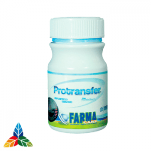 Protransfer-farma-care