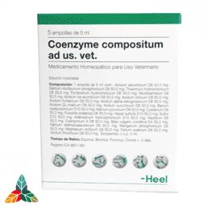 Coenzyme-veterinario-ampollas