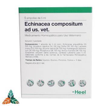 Echinacea veterinaria ampollas Farmacia Homeopática online