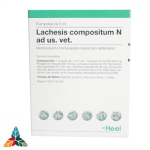 Lachesis-veterinario-ampollas