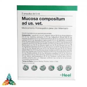 Mucosa-veterinario-ampollas