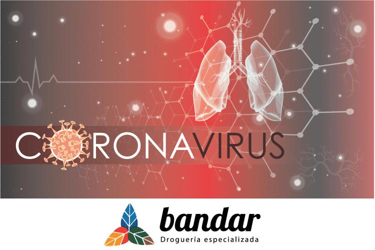 Coronavirus, prevención